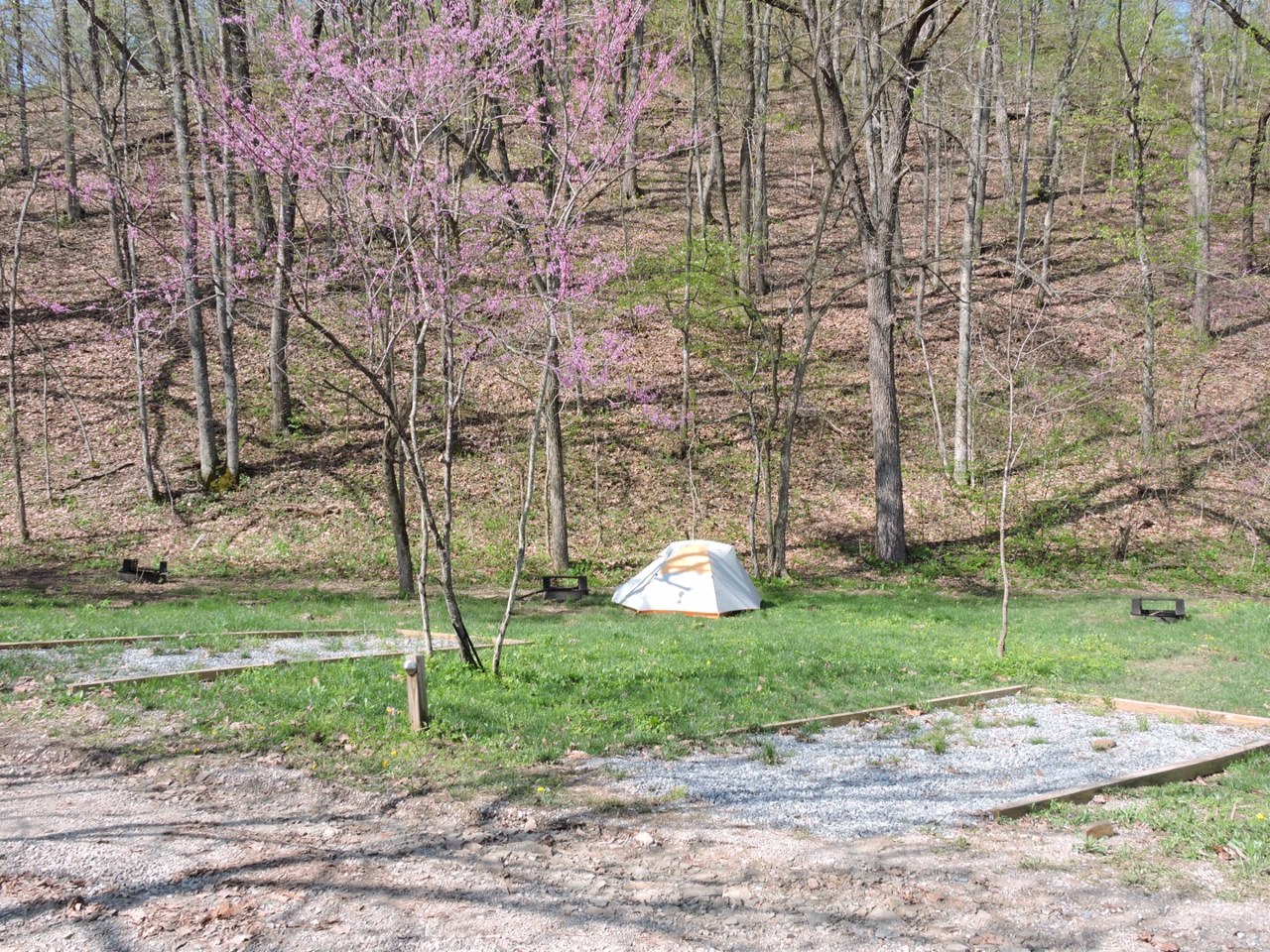 Each of these four sites are conveniently located in our main Base Camp area and equipped with a space for one vehicle and fire ring. Closest access tobathhouse, water pump, and the free Base Camp activities. Nightly Fee: $10 plus $10 per person.