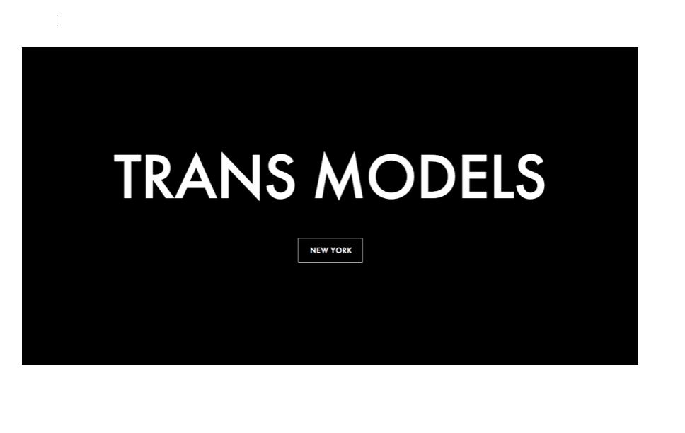trans model