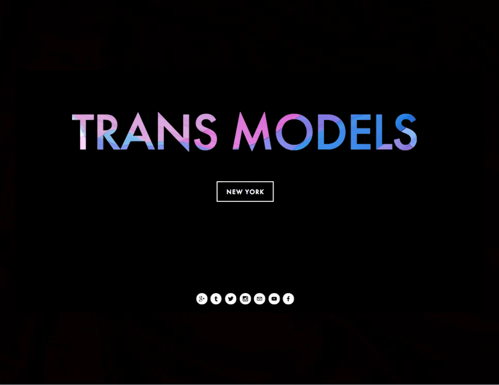 trans models transgender flag