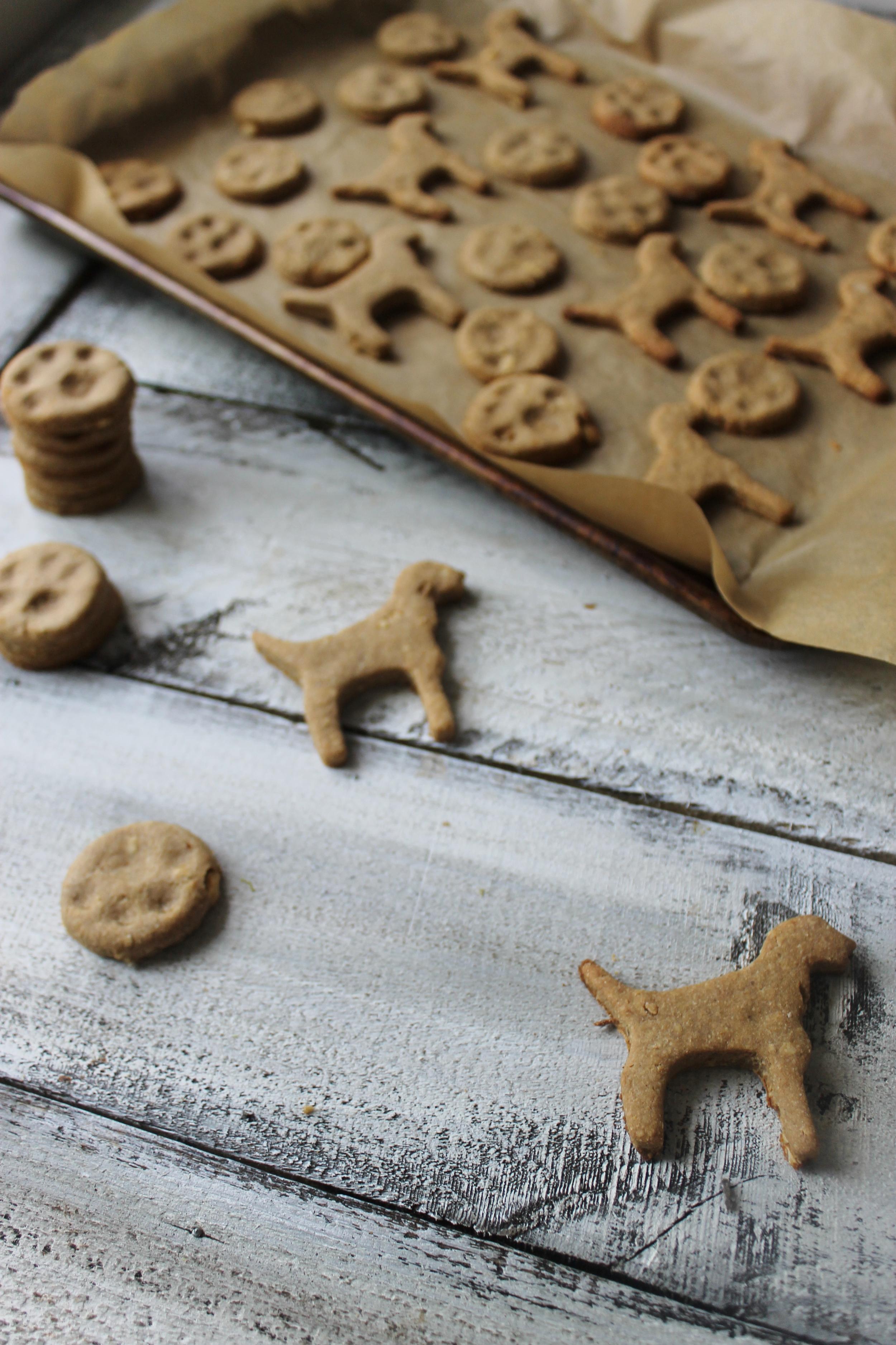 peanut butter, honey, and banana dog treats.jpg