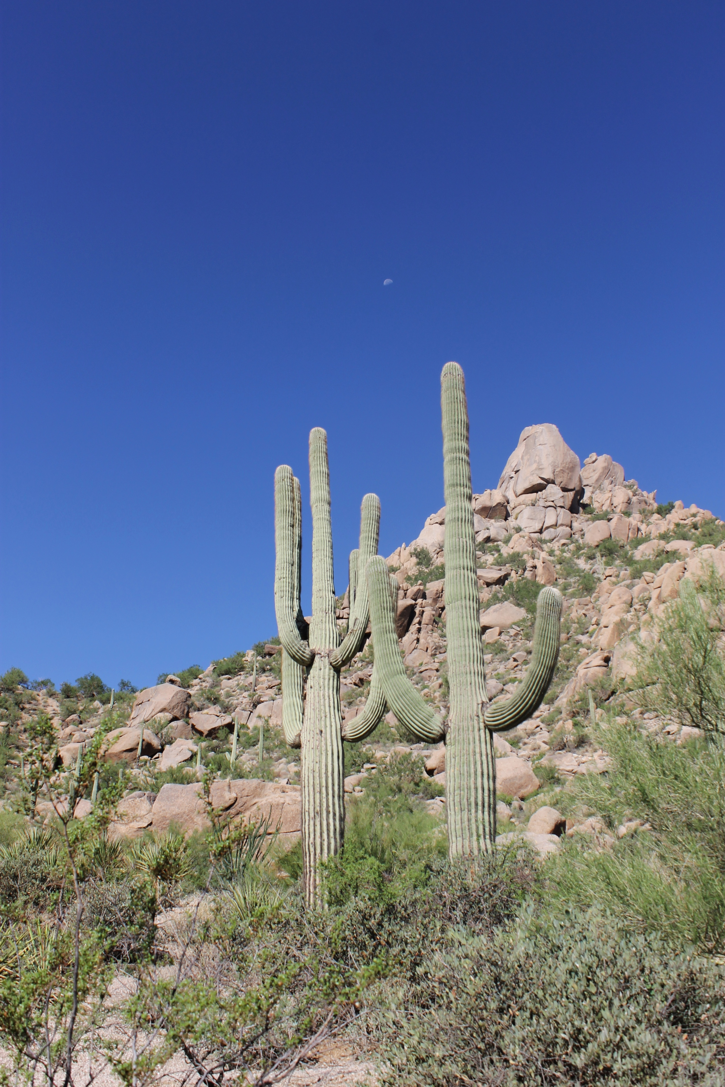 A Girl's Weekend in Arizona: My Diary of Us