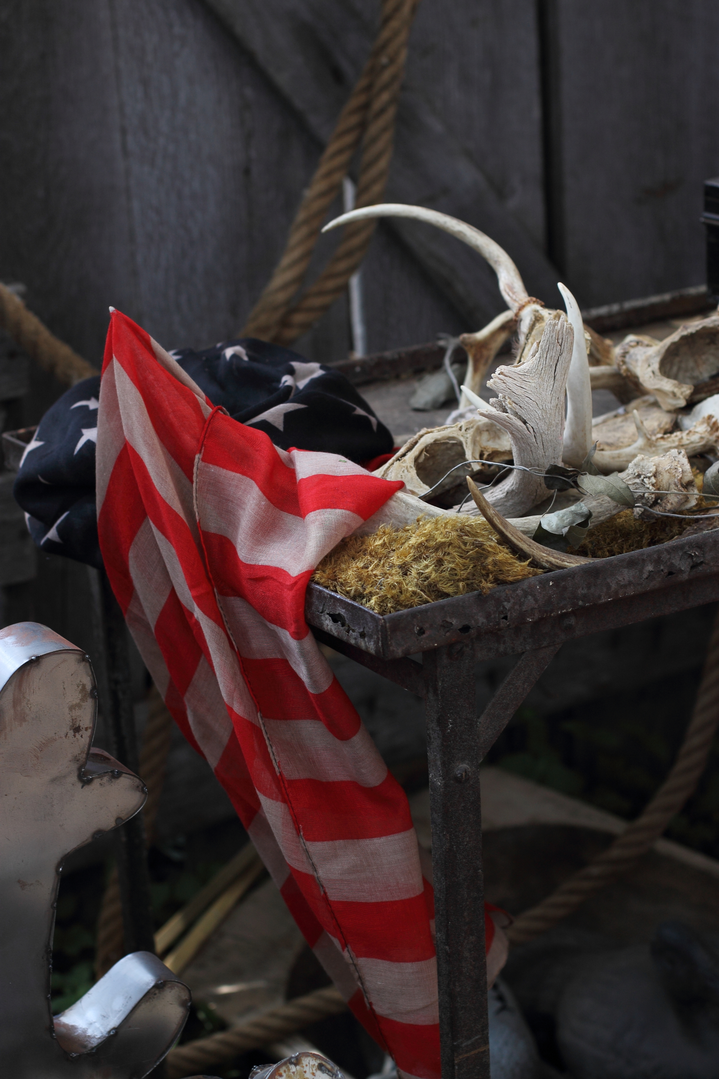 Flags and Horns: My Diary of Us