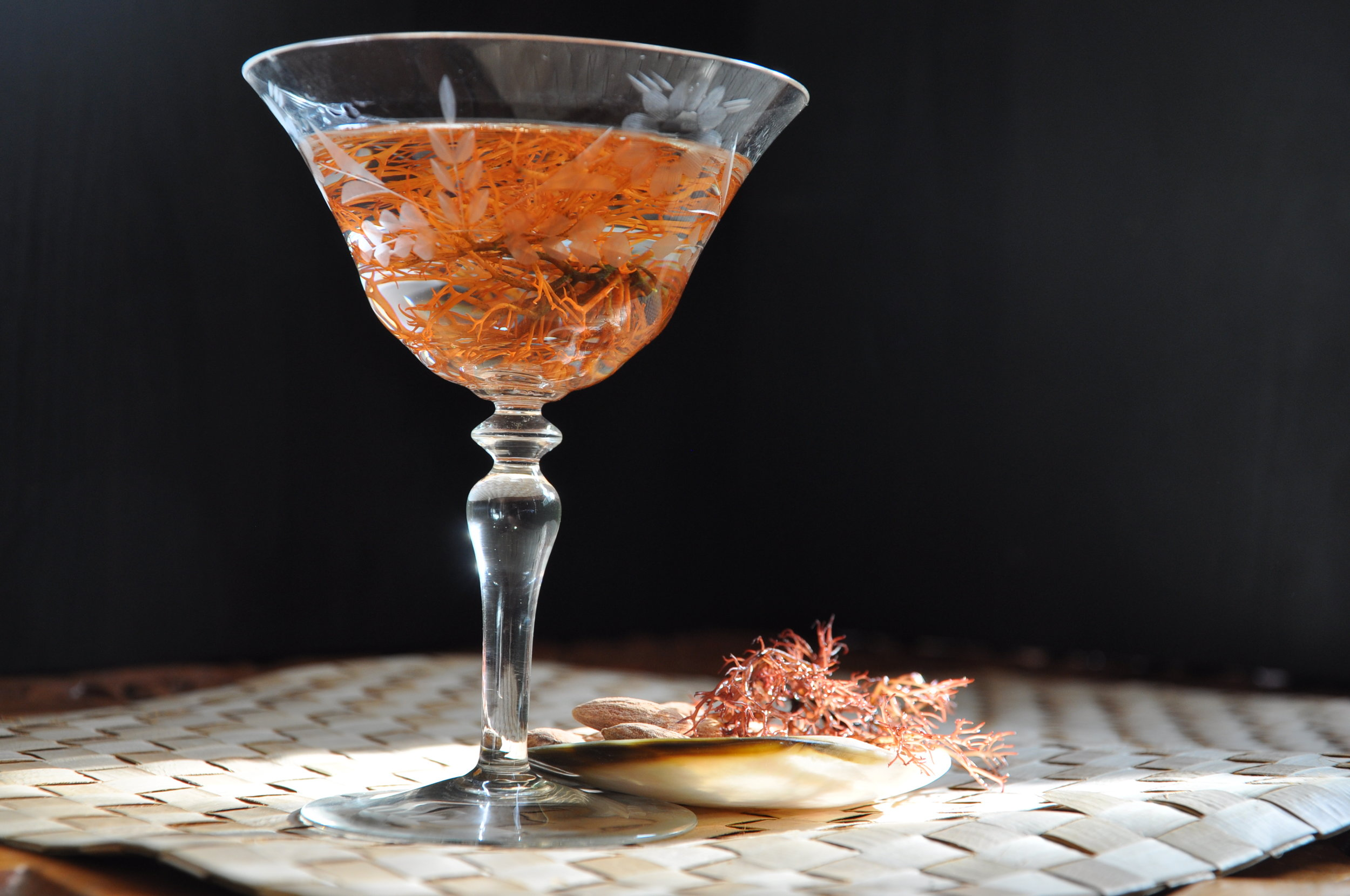 Seaweed Cocktail- credit Polly Legendre - Polished Brands.jpg