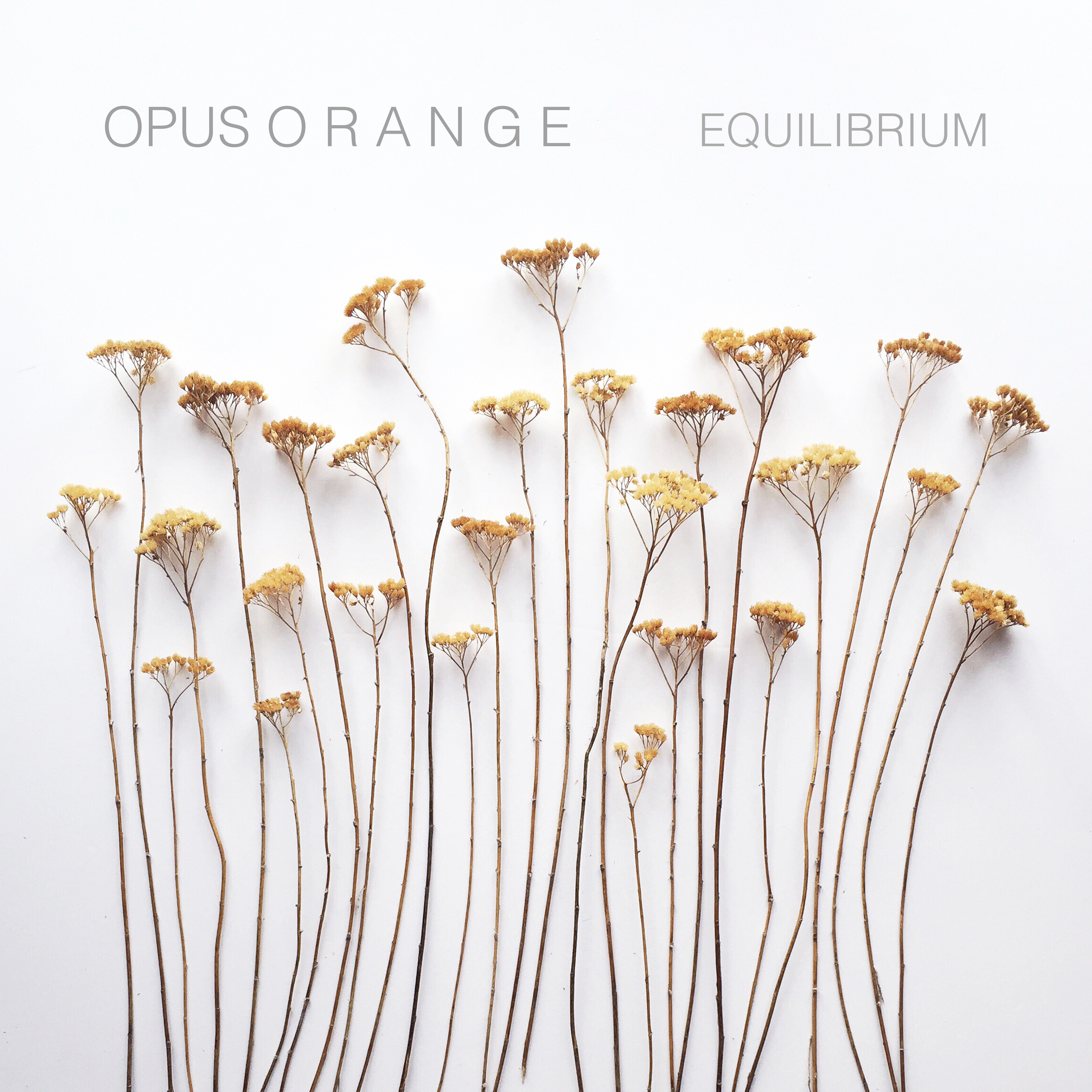 EQUILIBRIUM (2015)   PURCHASE  |   iTunes   |   Bandcamp    STREAM  |   Spotify   |   Soundcloud     SHEET MUSIC
