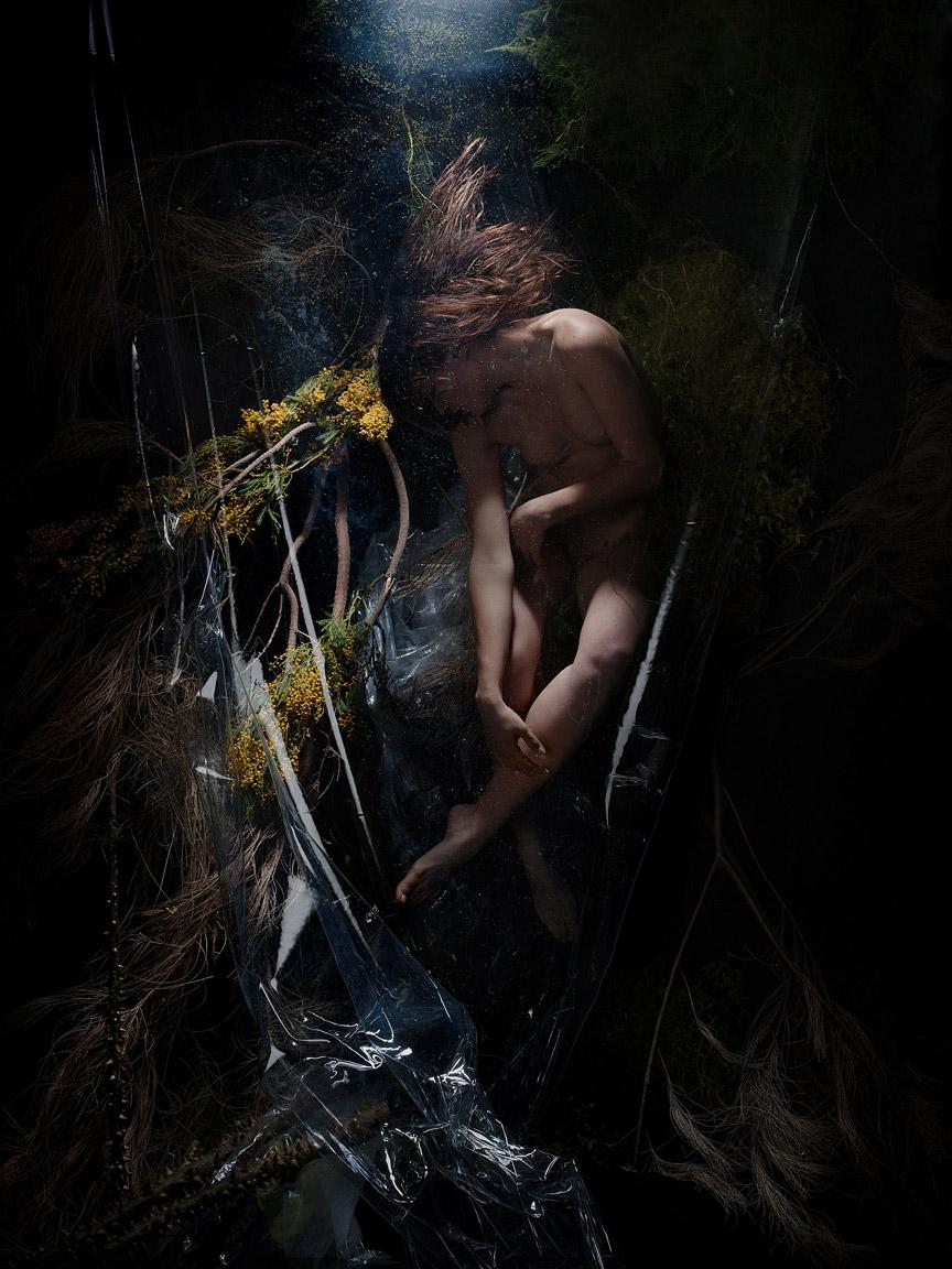 Undergrowth-No.1-Print.jpg