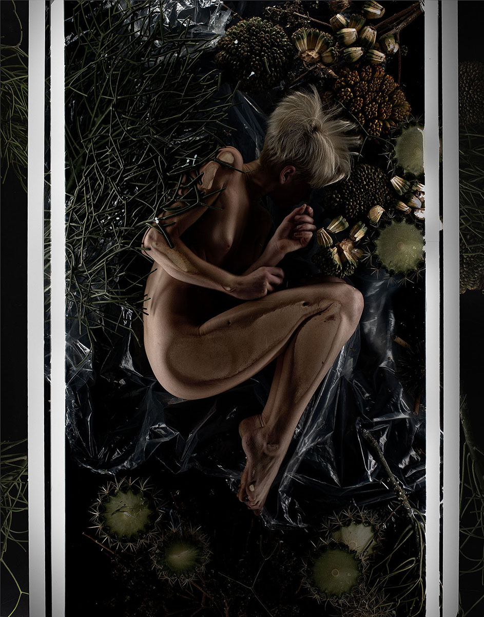 Undergrowth No.7 Print.jpg