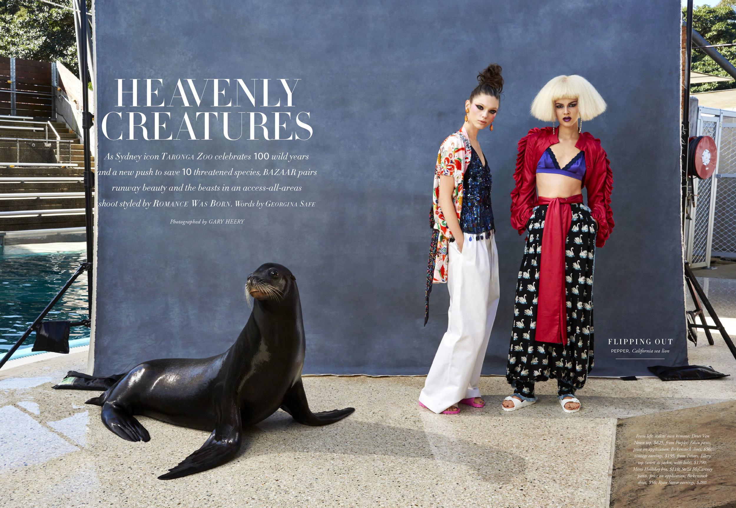 Fashion Zoo-1.jpg