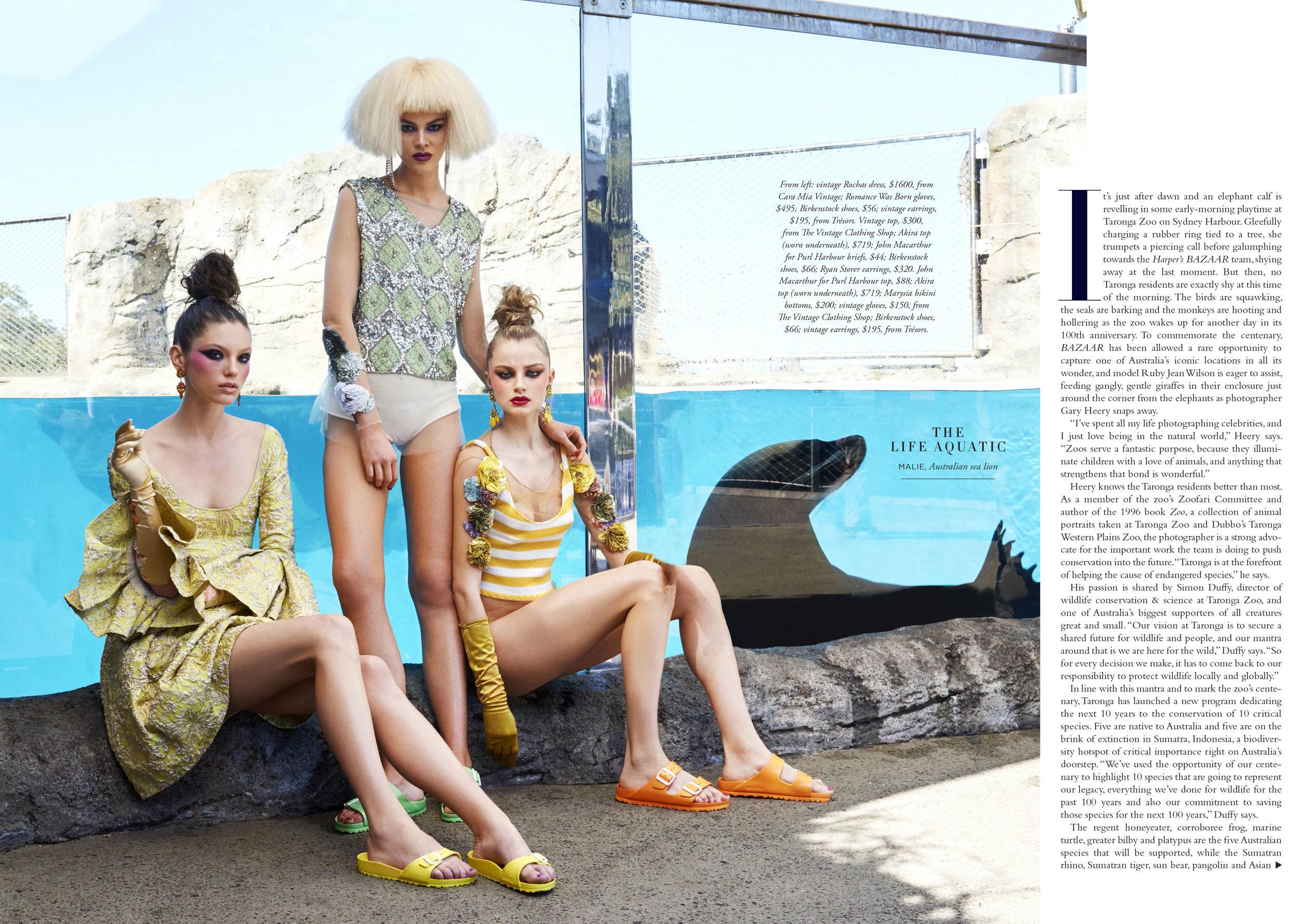 Fashion Zoo-3.jpg