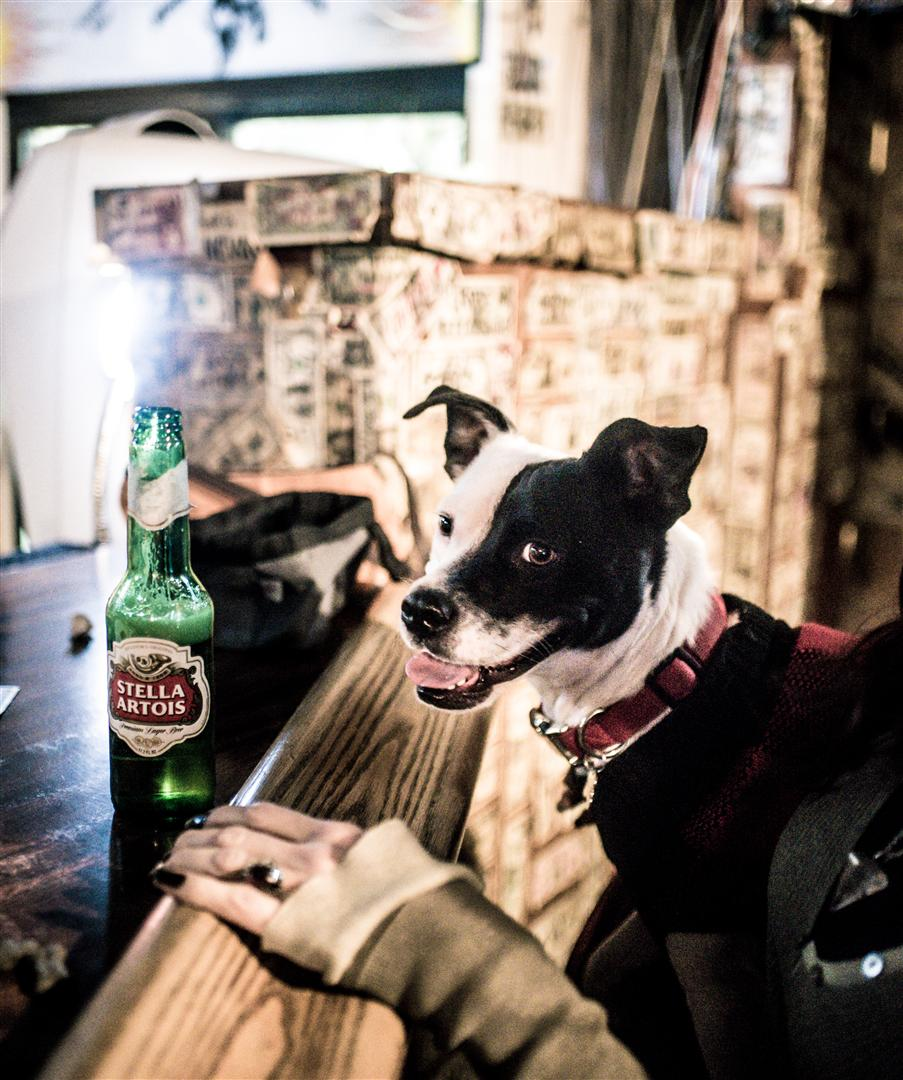Tango's First Beer