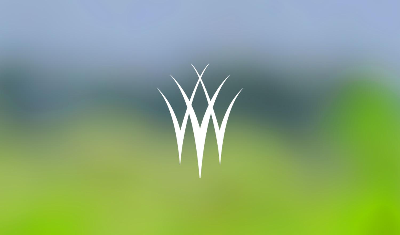 The Wetlands Initiative