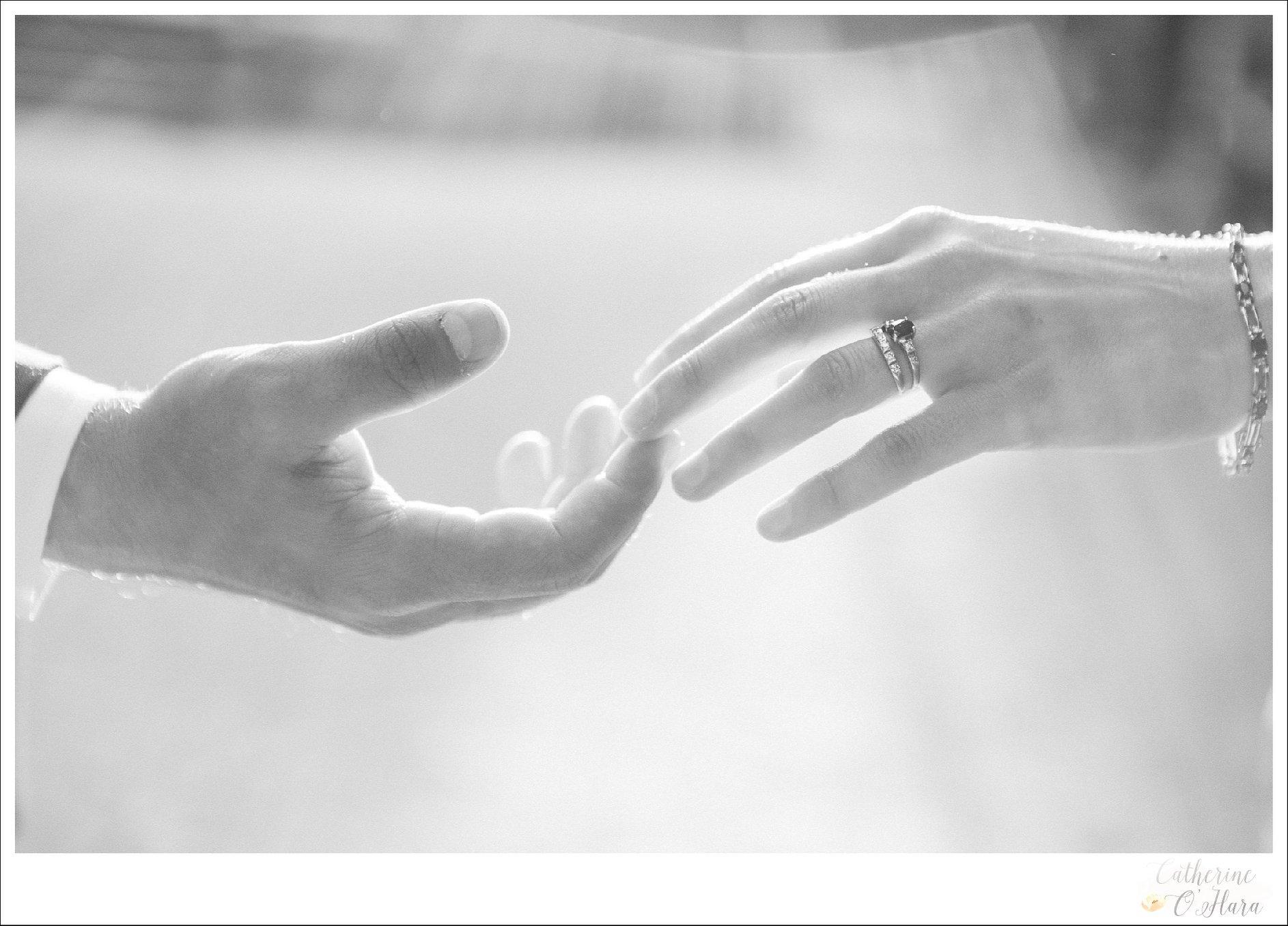 english speaking engagement photographer paris france.ring.jpg