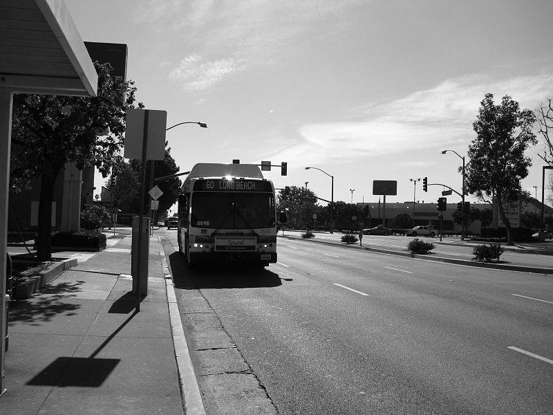 BW800px-OCTA_Bus_Stop_01.jpg