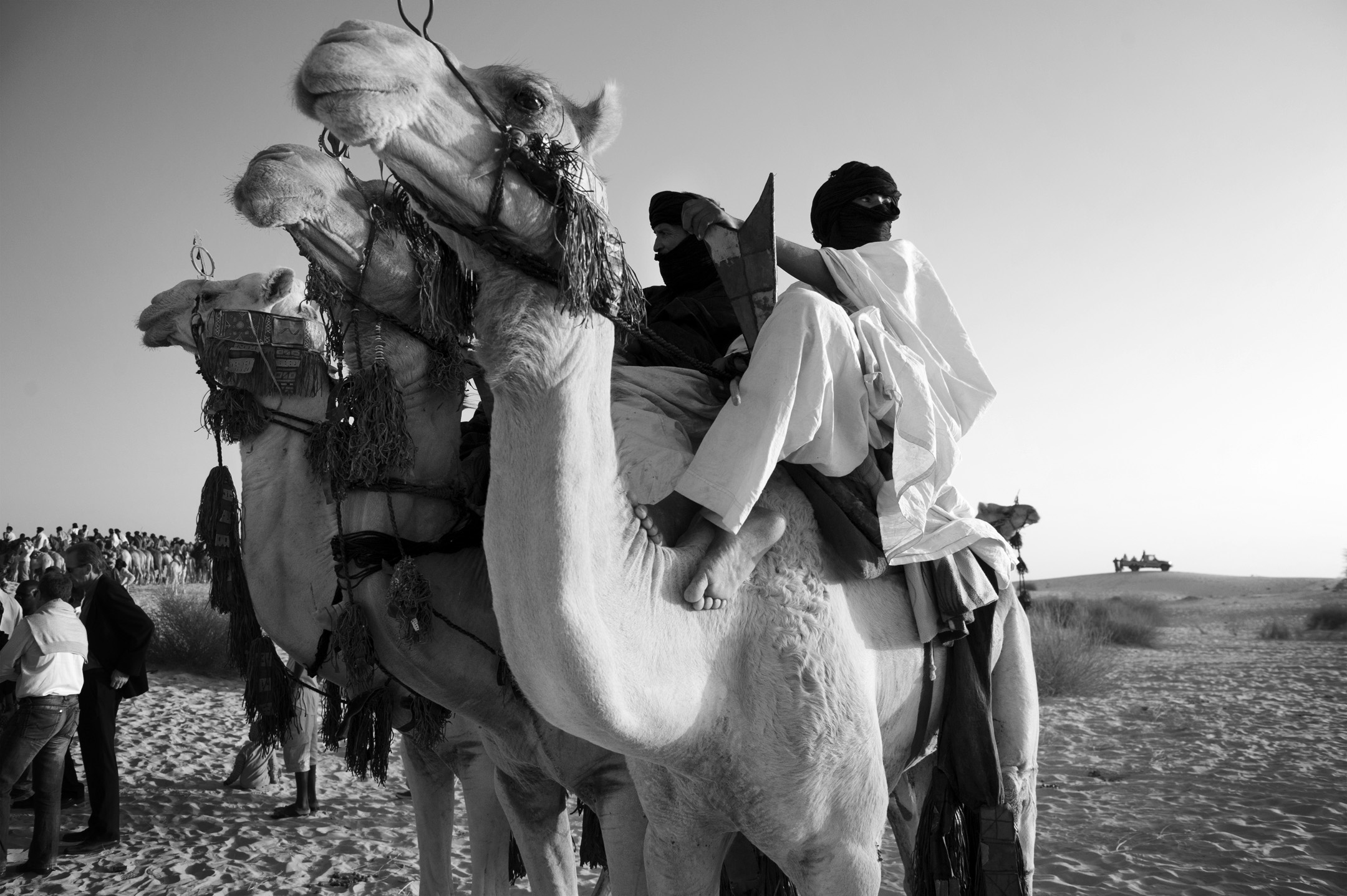 Tuareg Camel Riders.jpg