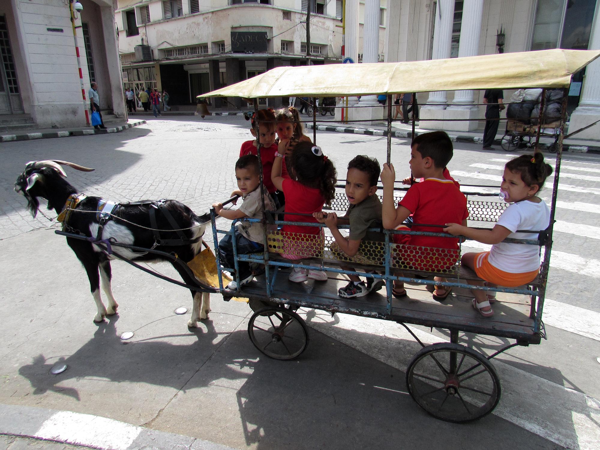 Kids' activities in Santa Clara