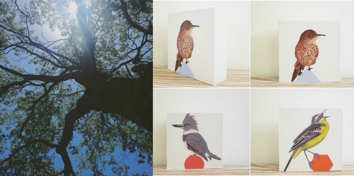 The old hackberry tree that resides in the backyard of Red Tile Studio, plus some birds from our new collection.