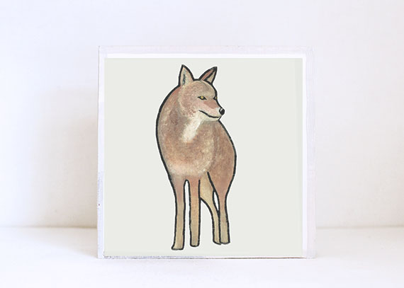 Coyote Full Body