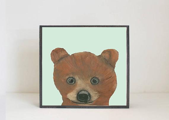 Kodiak Bear Face