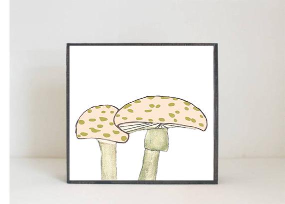 Toadstool Mushroom