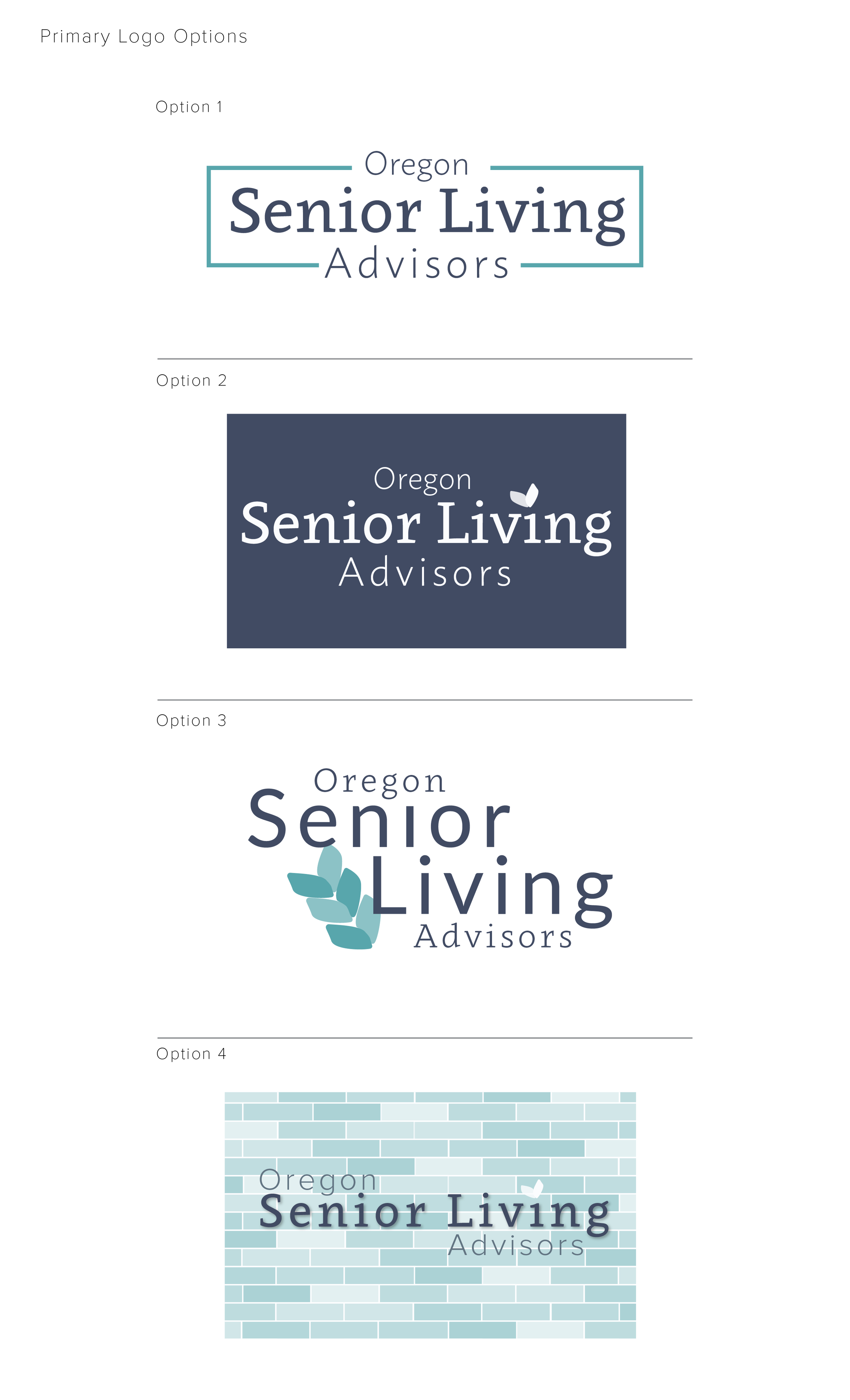 Logo Concepts designed by Brightly & Co.