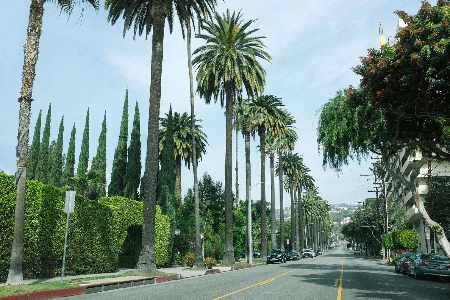 Los_Angeles102.jpg