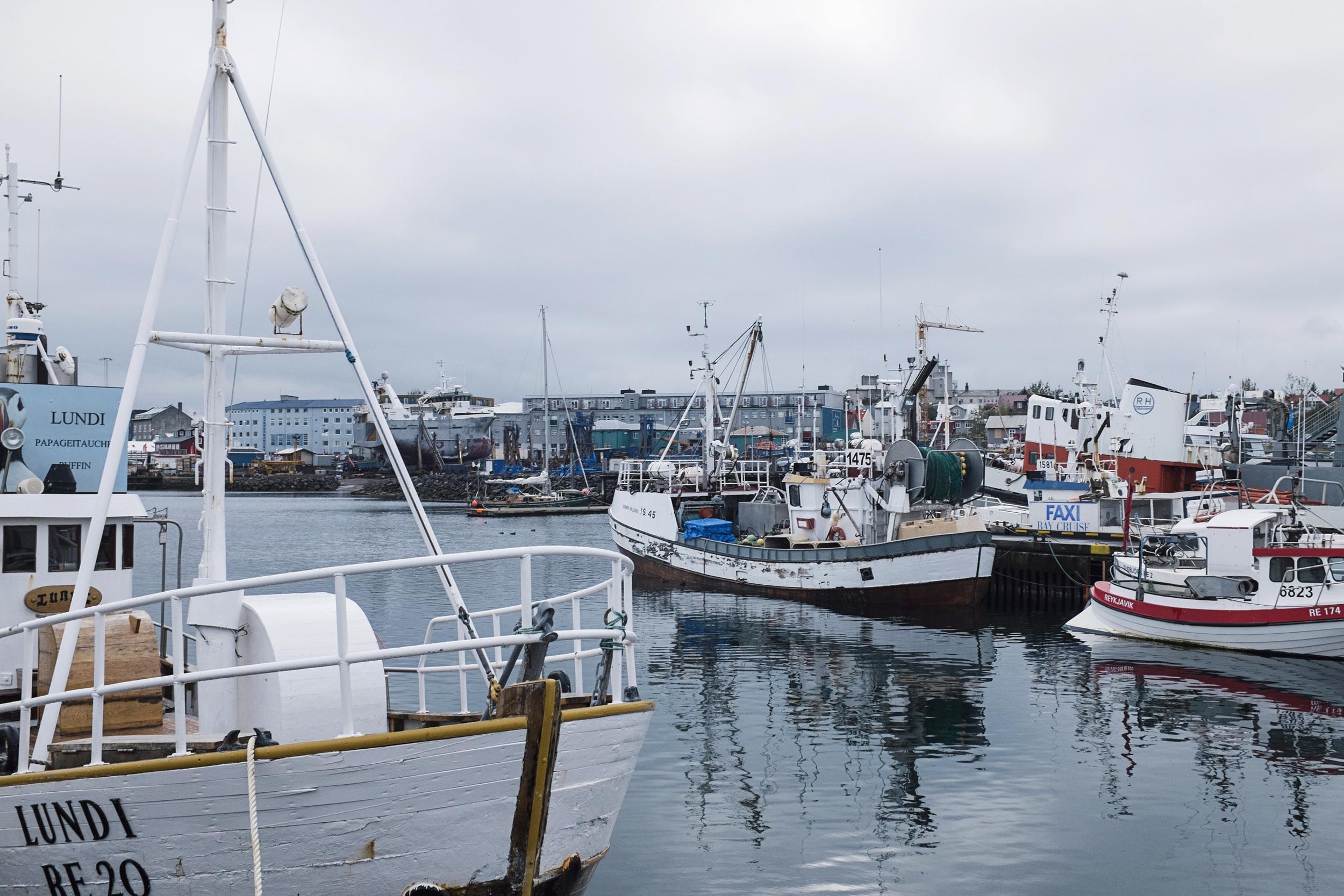 Harbor, Reykjavik