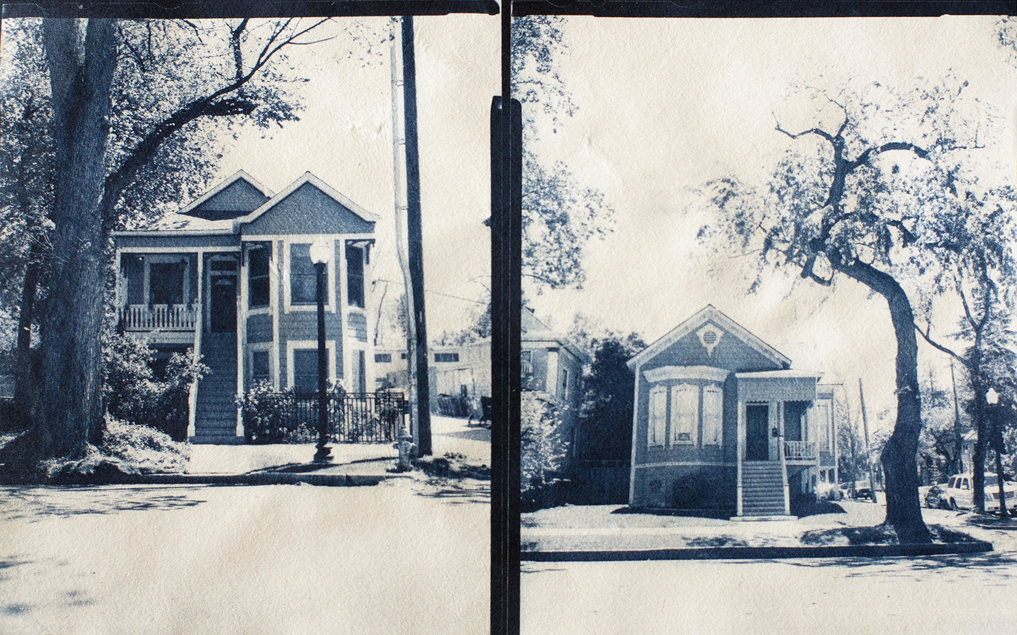 Contact prints from 4x5 film negative