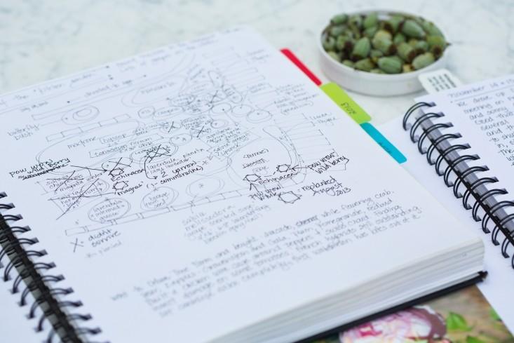 healdsburg-garden-journal-mimi-giboin-733x489.jpg