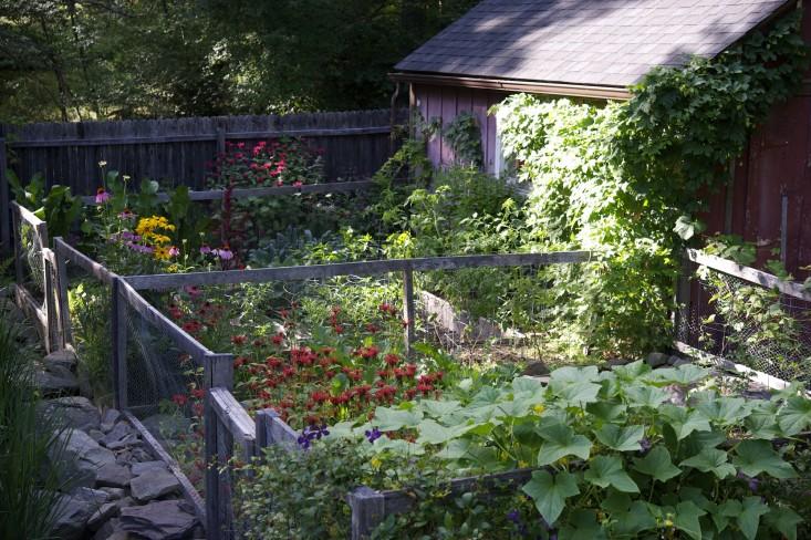 laura-silverman-raised beds_back-gardenista.jpg