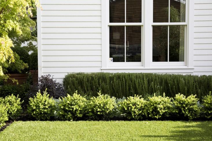 architect-visit-barbara-chambers-garden-mill-valley-24-gardenista.jpg