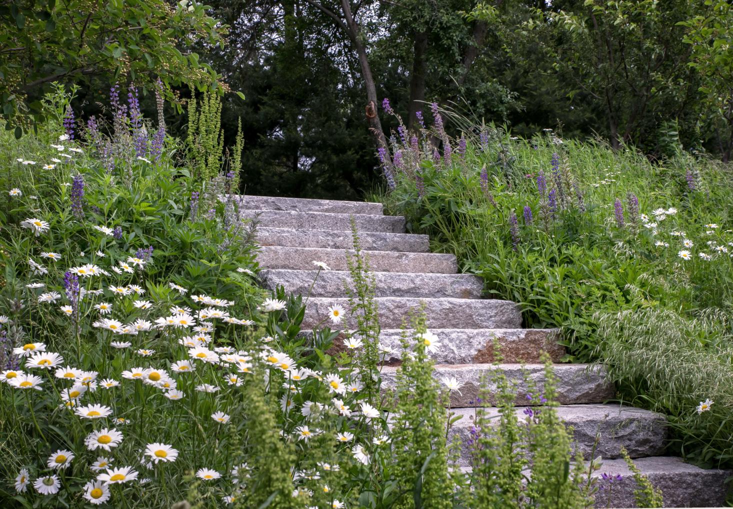 brookline-farm-bob-hanss-stairs-3-1466x1018.jpg