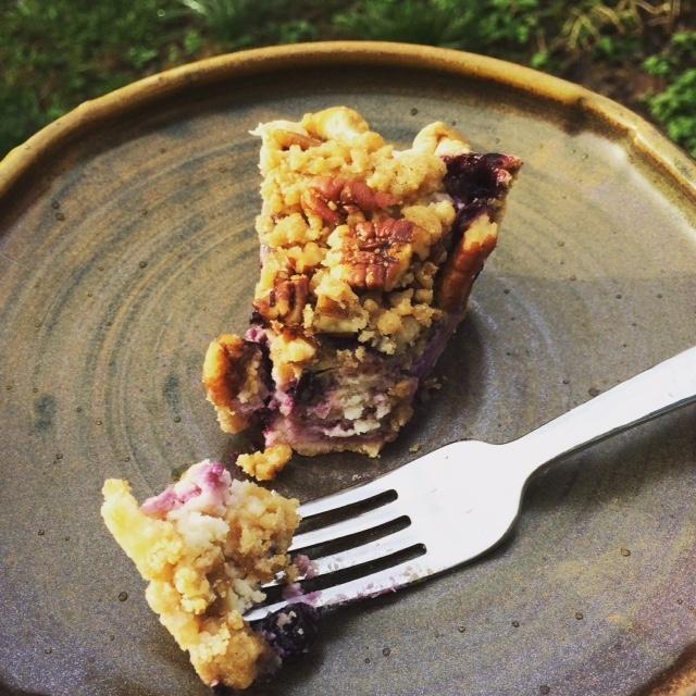Blueberry Custard Crumb Pie