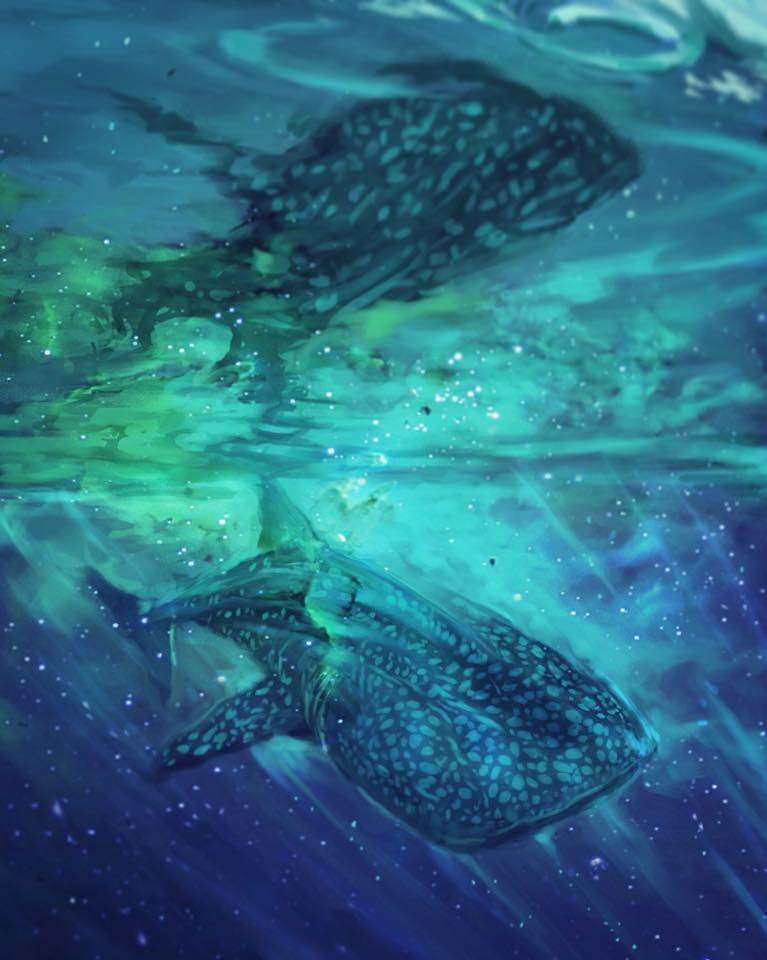 Whale Shark Galaxy Digital