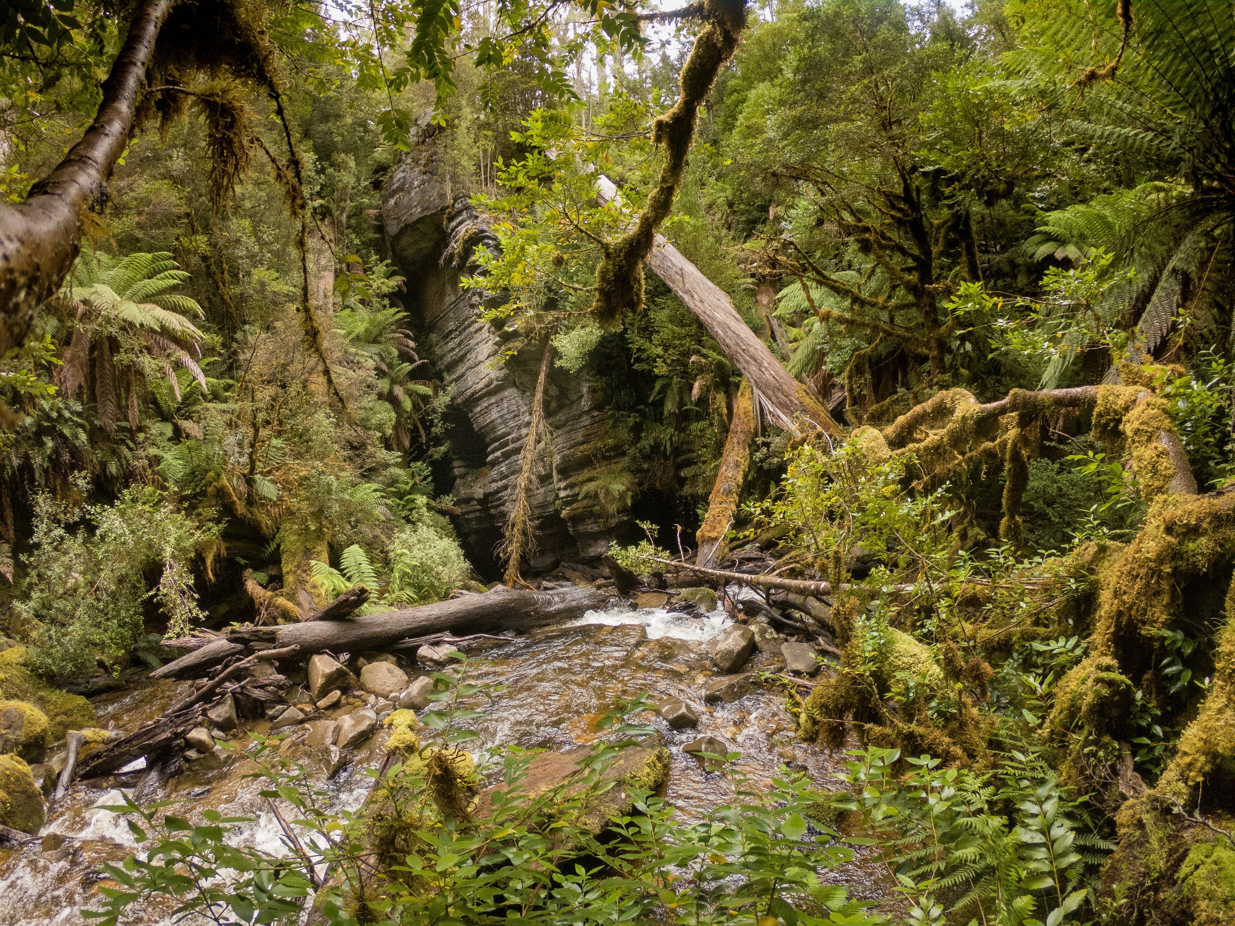 Where the river disappears into the caves.  GoPro Hero6 Black.  Tasmania, Australia.  (2018)
