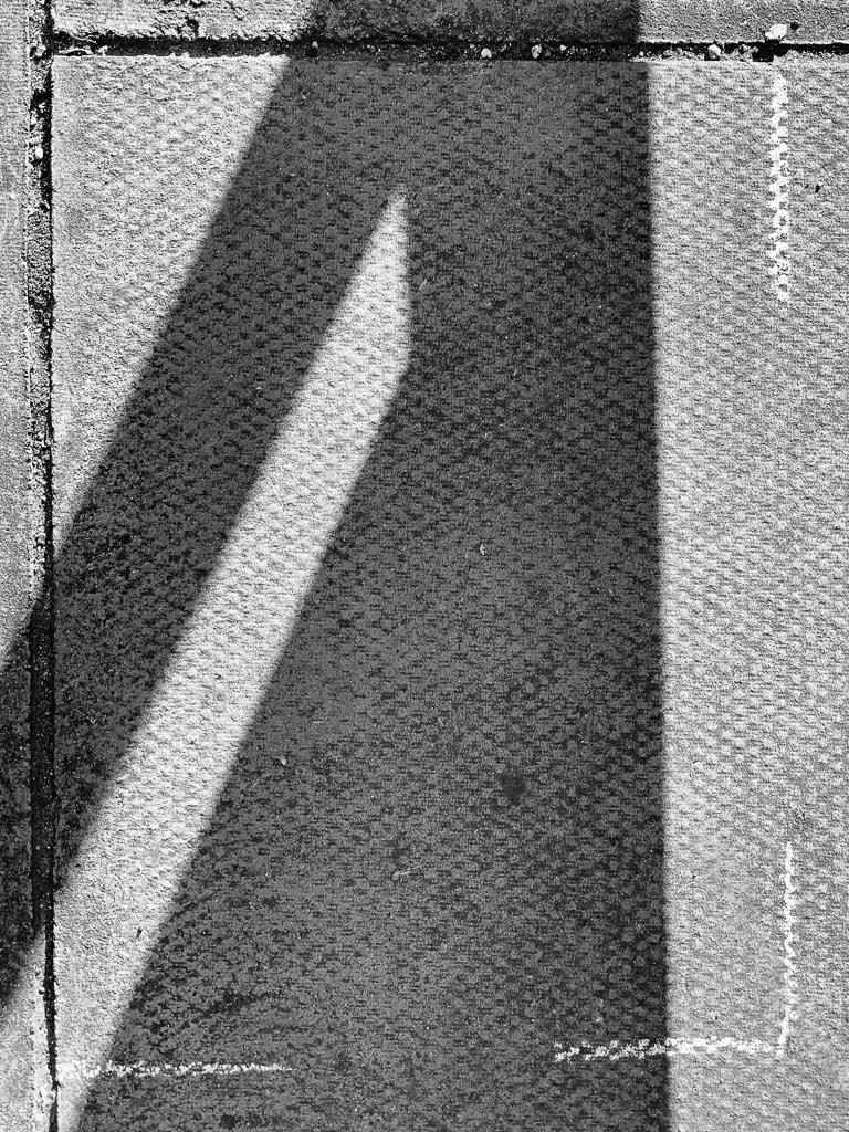 Shadowgram capture