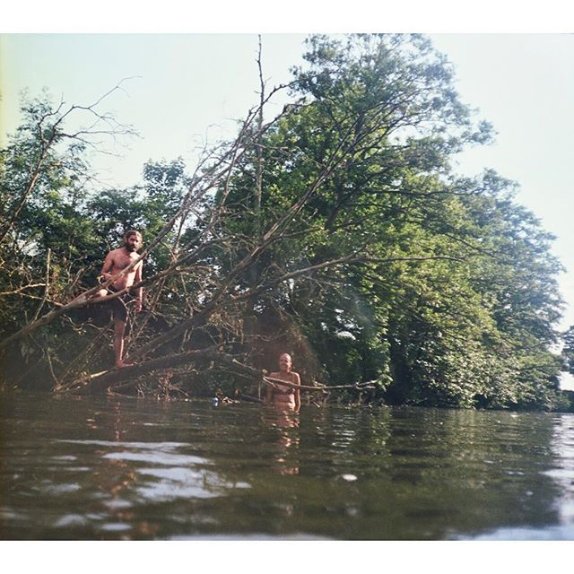 Max and frank in a tree. Max's natural habitat #35mm #kodak #portrait #colourfilm #filmisnotdead #canon #adventure #boatlife #summer #nature #photography #analogue