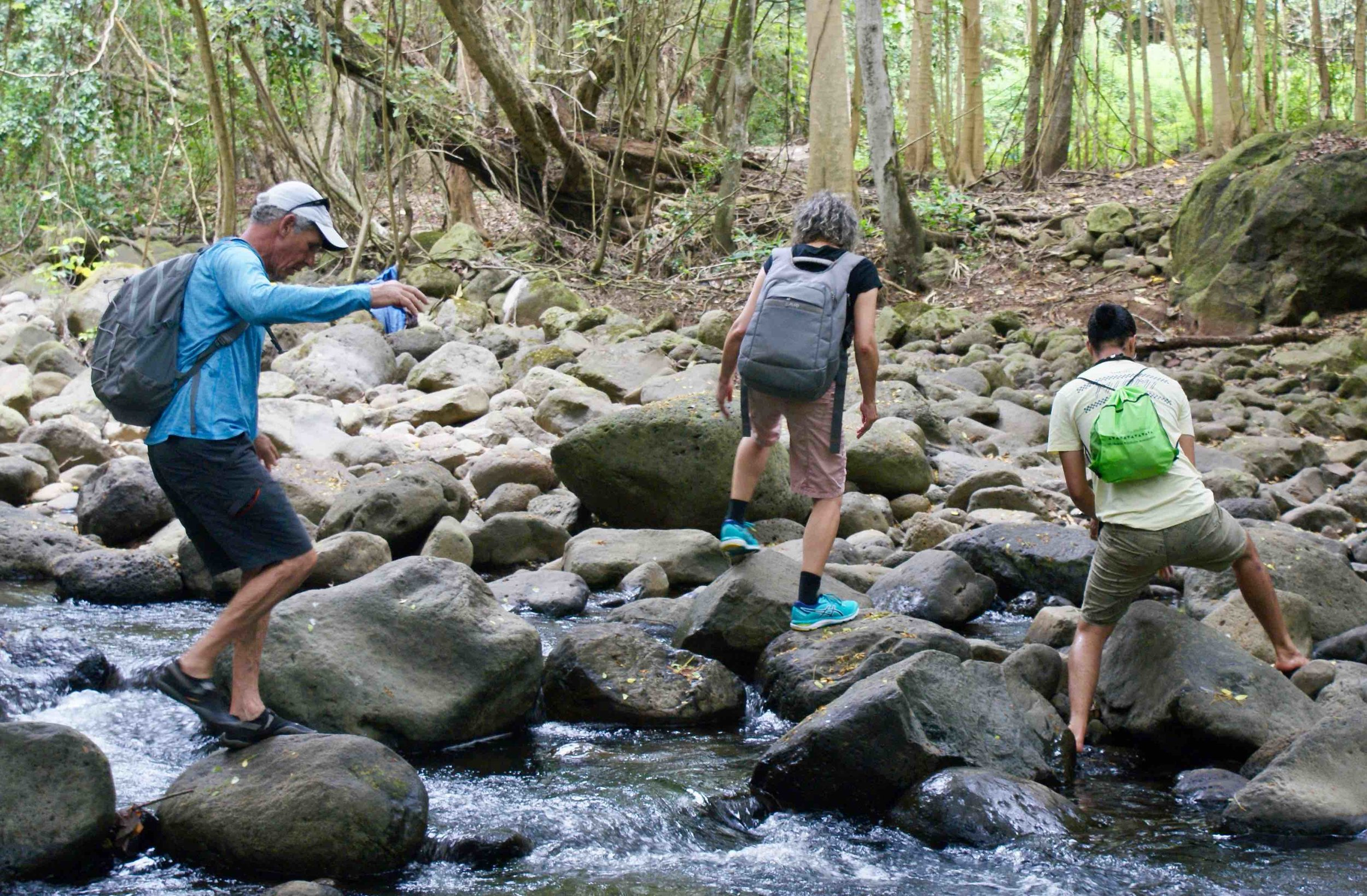 crossing halawa stream molokai.jpg