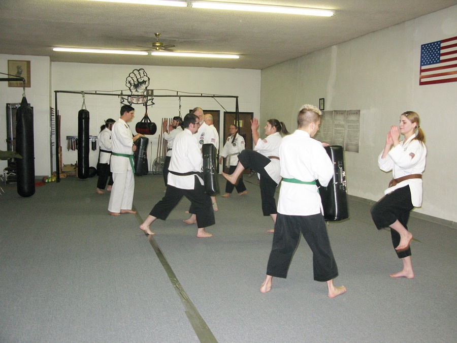 group kicking techniques.JPG