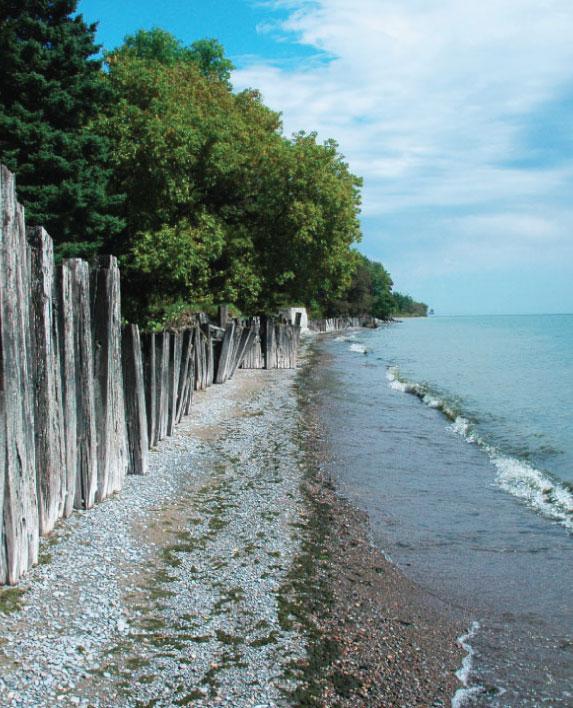 AJAX SHORELINE IMPROVEMENT    Waterfront Master Plan / Environmental Analysis  Toronto, ON, Canada