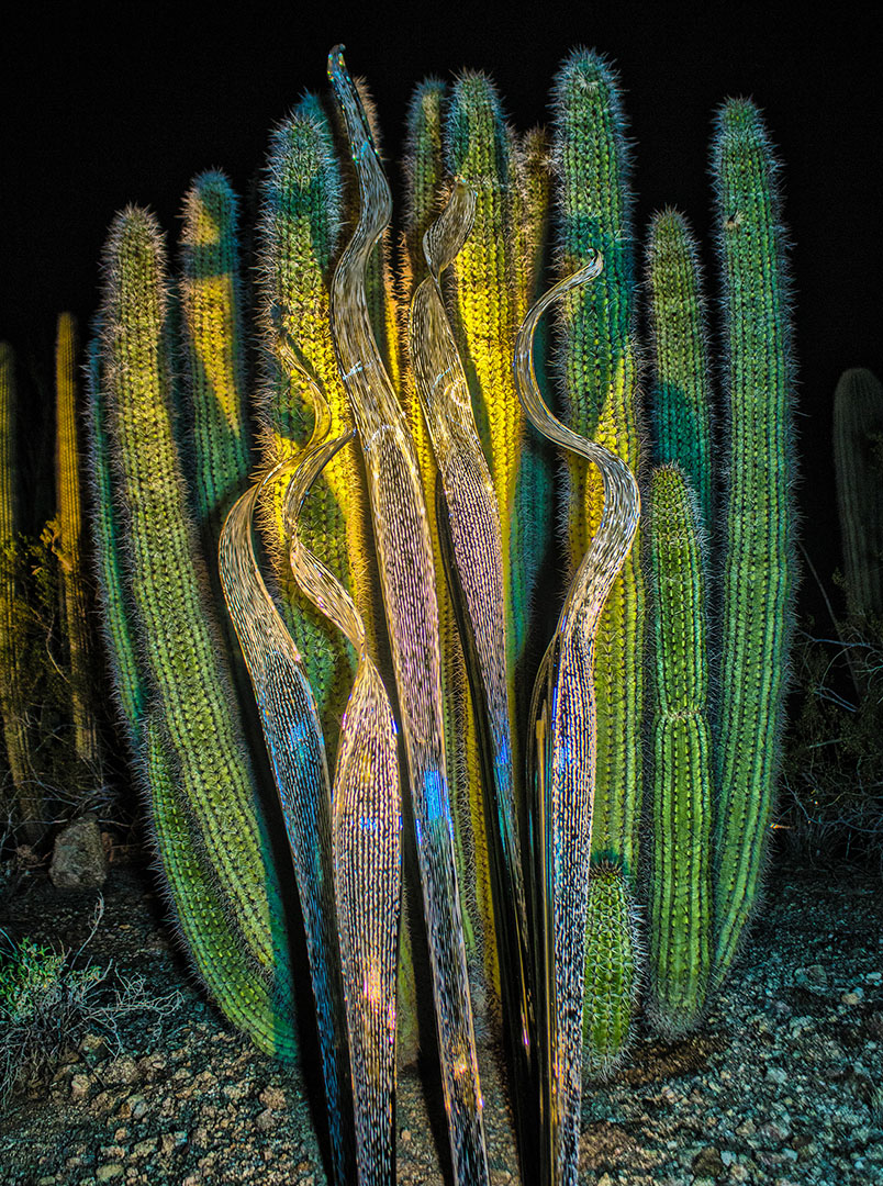 #73 -- Chihuly Cacti
