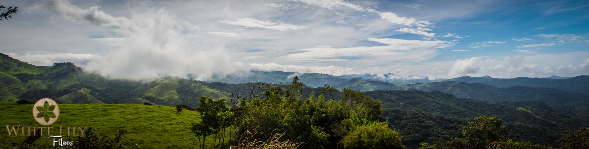Cloud Forest_BLOG.jpg