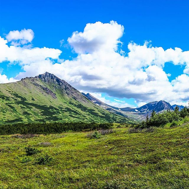 #FlatTop #Mountain #Alaska  3 of 3 • . #InstaGrid #InstaPano #Grid #3Grid #Panoramic #Adventure #Scenic #Beauty #Nature #Fun #Travel #Beauty #WhiteLily #Films #Filmmaker #Canon #Nature #Landscape #WhiteLilyFilms #Photographer #Cinematographer #Phoenix #HaveCameraWillTravel #Video #Love