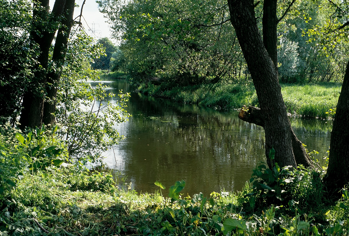 1308 english river.jpg