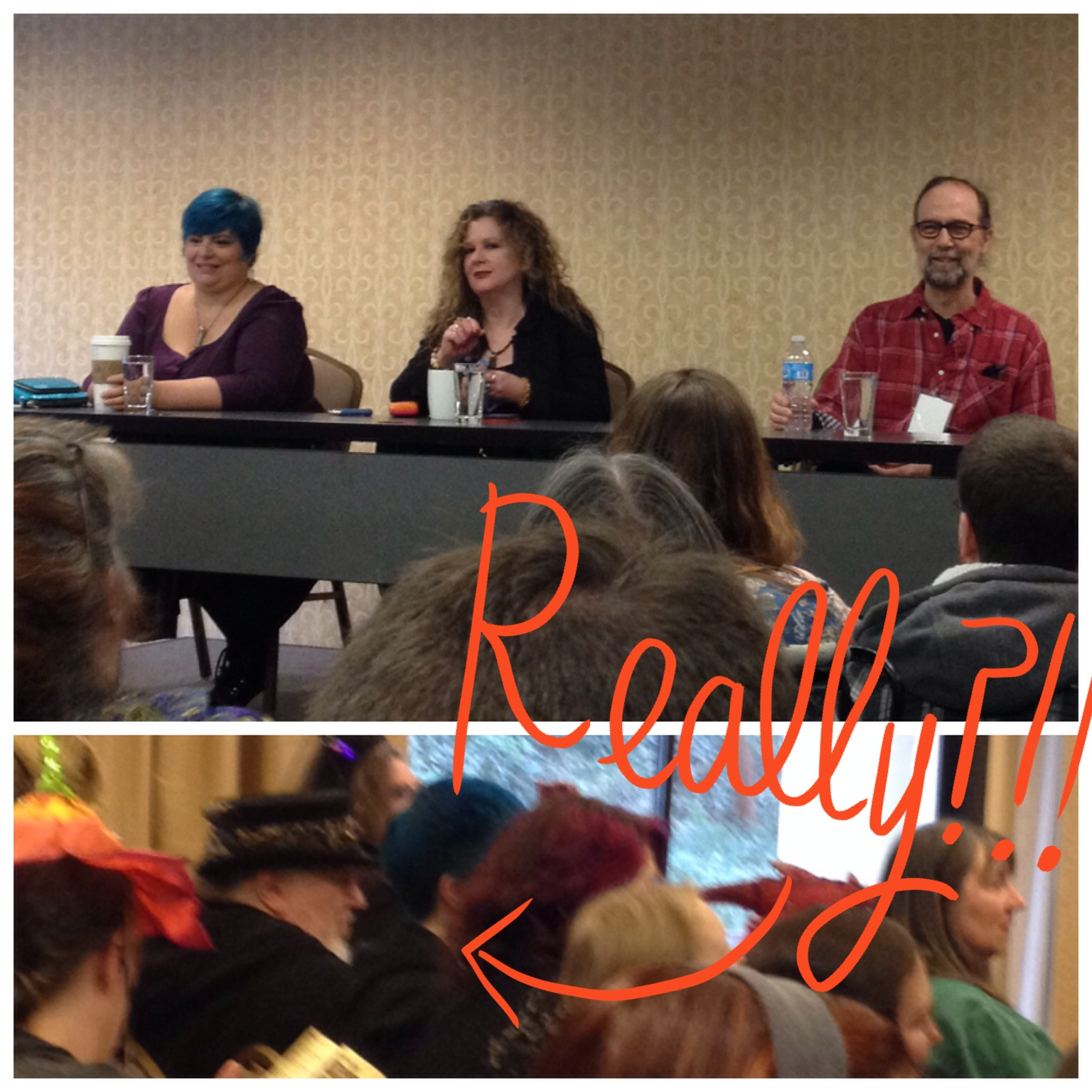 "Holly Black, Lauren K Hamilton and Charles deLint speaking about ""Why Are Strong Women In Fantasy Still A Surprise?""  AND LOOK WHO ELSE WAS THERE WATCHING."