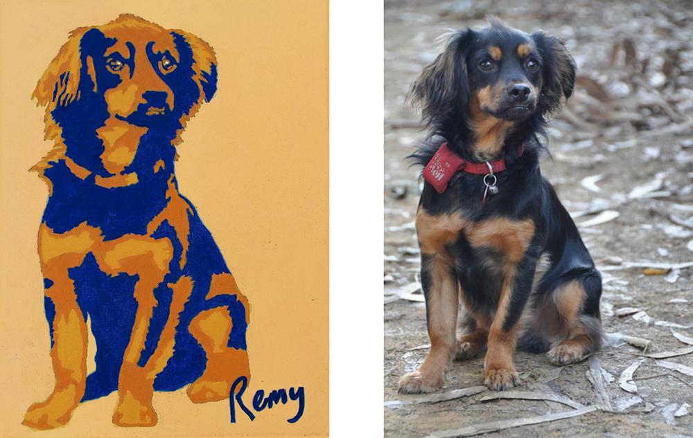 "Remy 20"" X16""                                                                       Photo Remy"