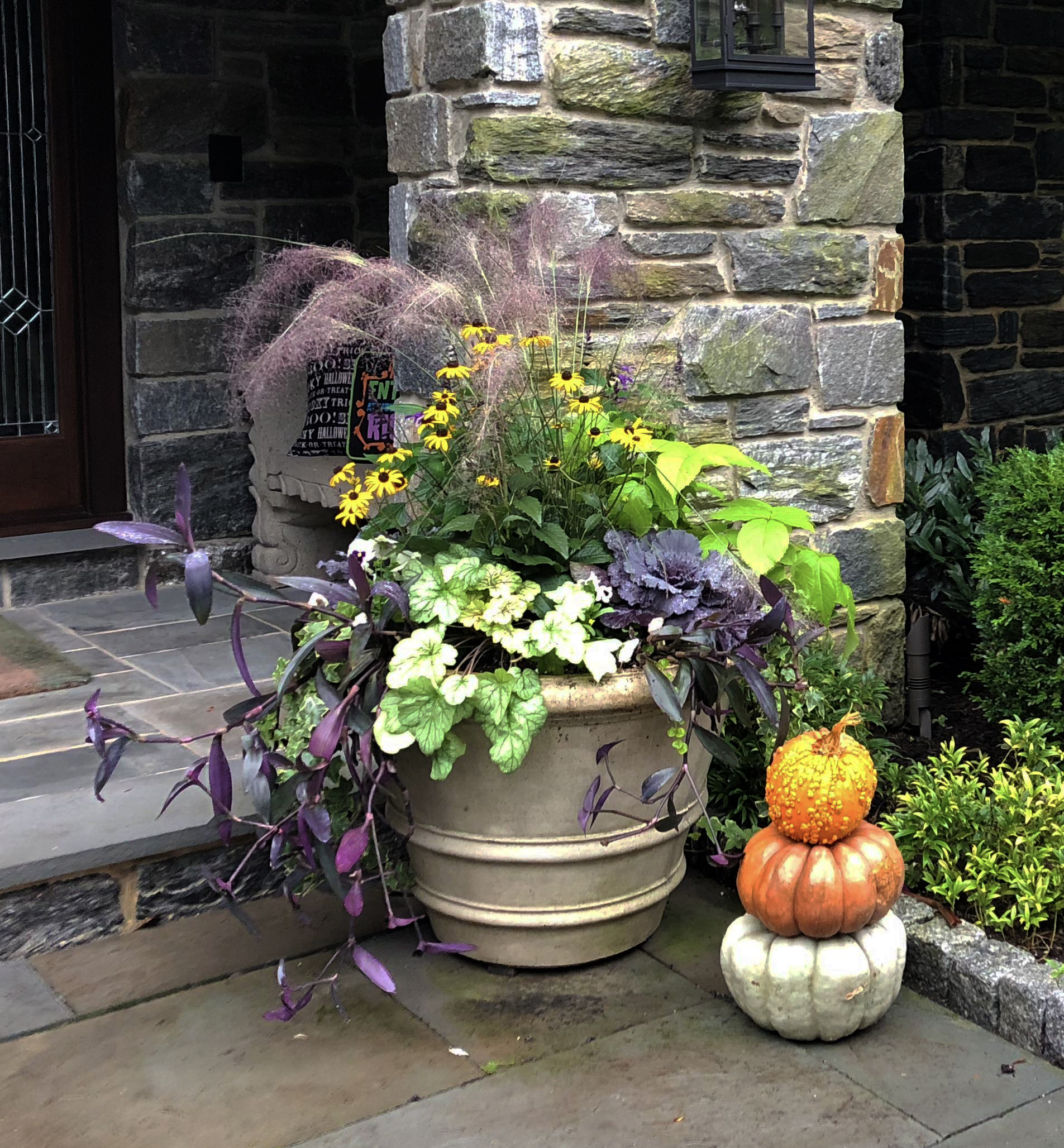 Container_Annuals_Fall_01_20190223.jpg