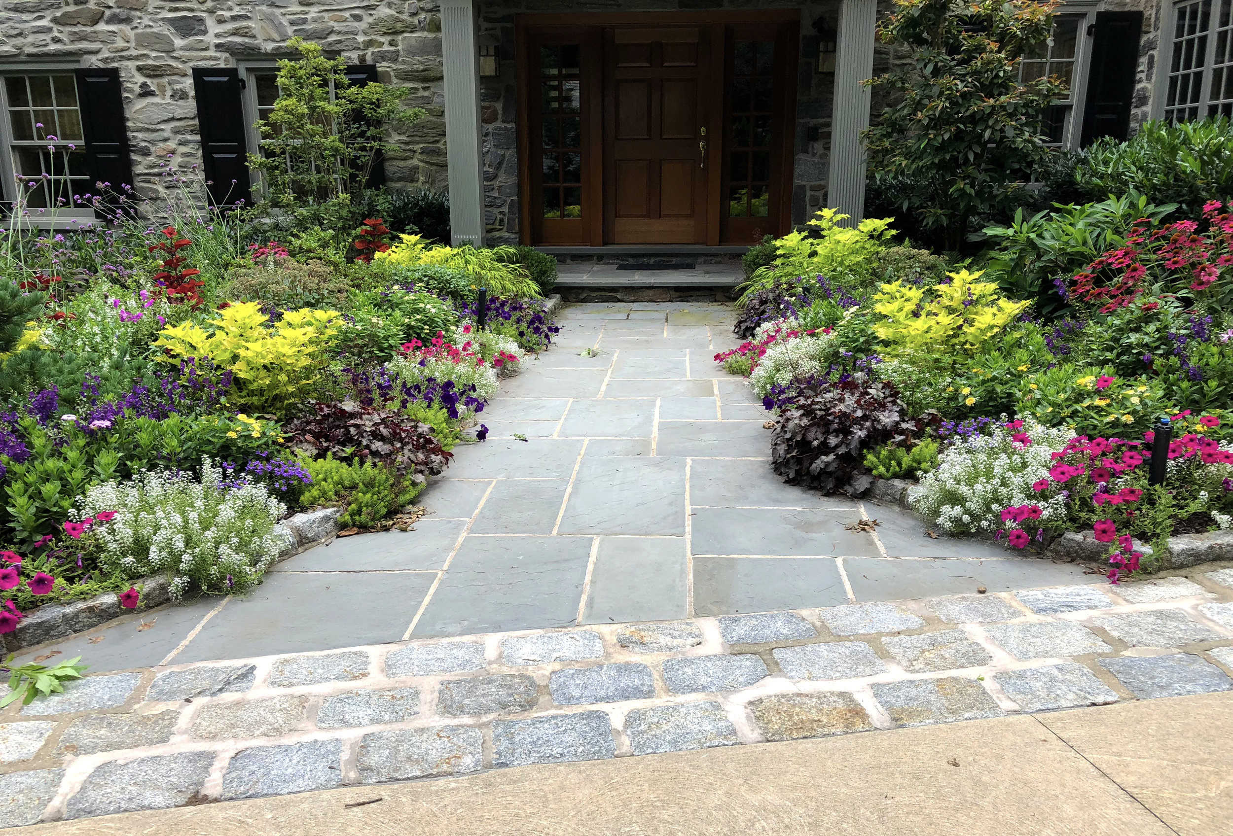 Annuals_Summer_Flowers_walkway_01_20190223.jpg