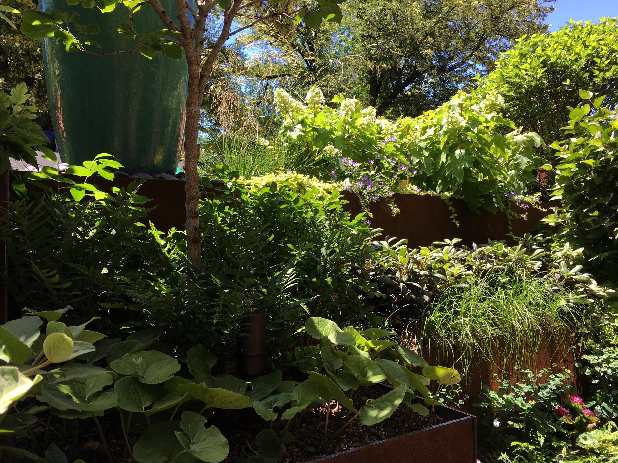 Roof Garden_Summer_02_20190225.jpg