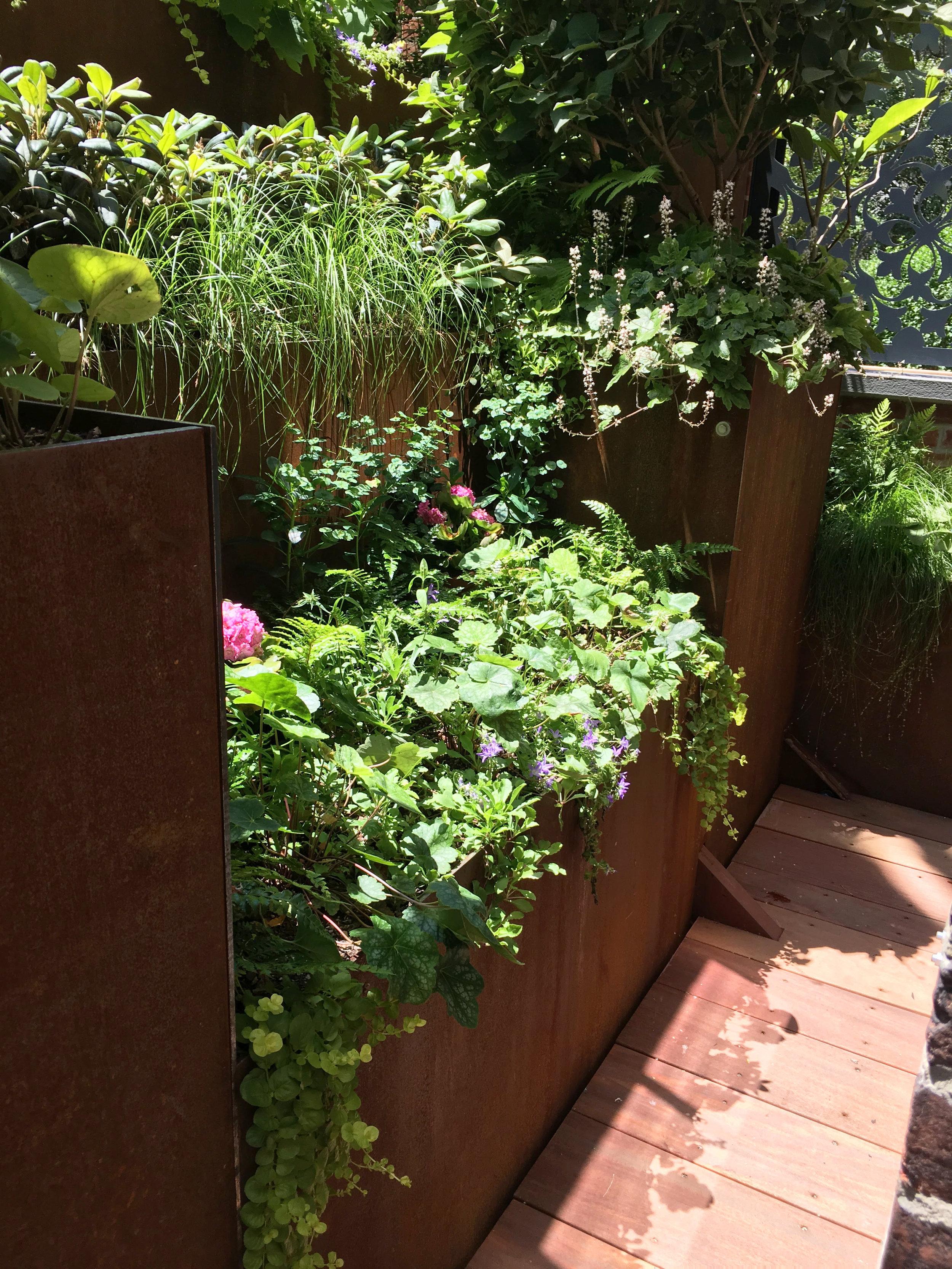 Roof Garden_Summer_20190225.jpg