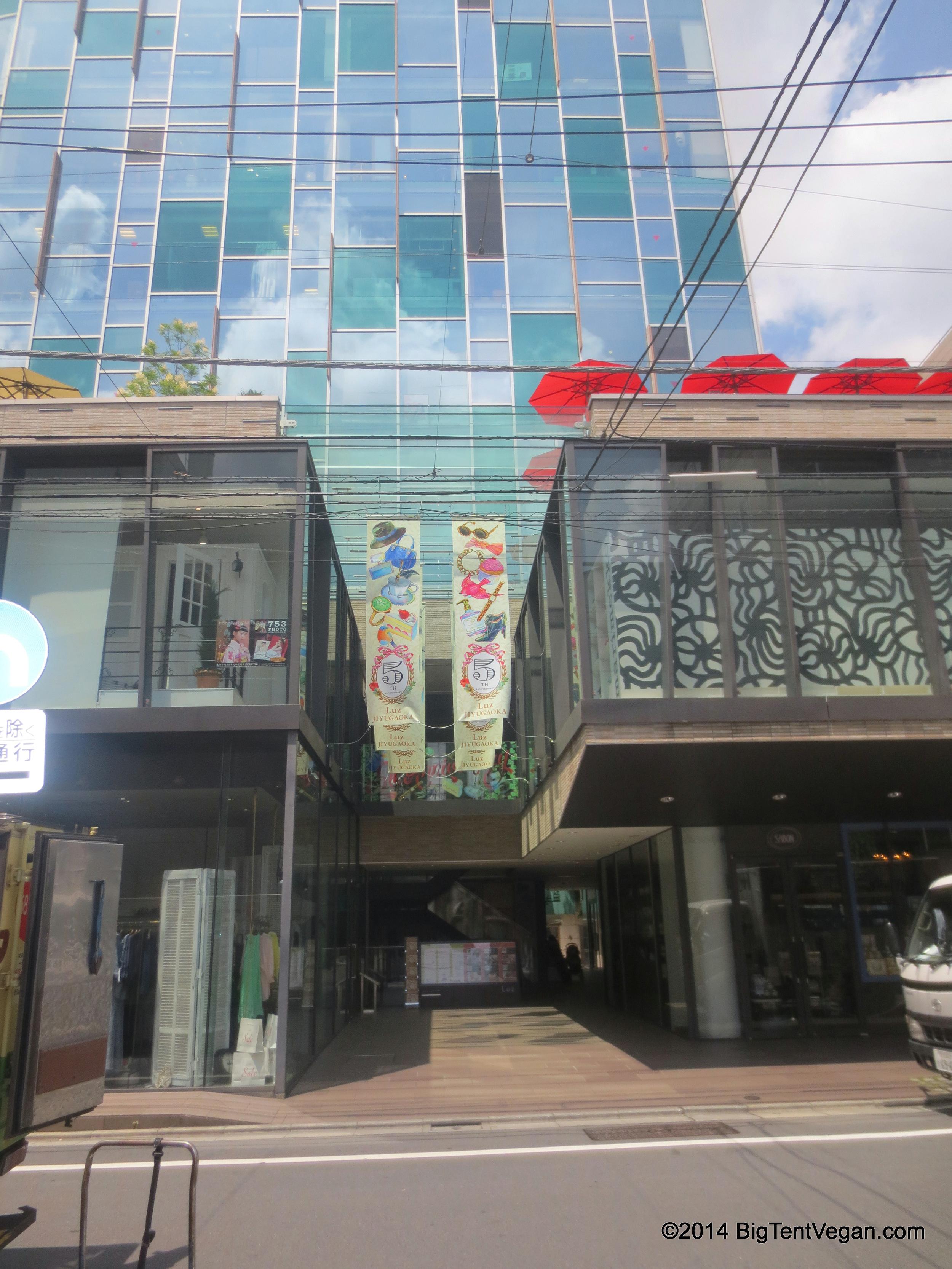 Luz Building