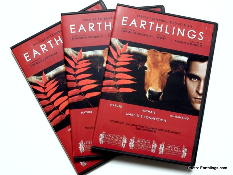 Give them a handwritten note promising you'll watch the documentary  Earthlings (view the 95 min film free online) . You don't have to go vegan...simply making an effort to understand why your loved one is vegan will mean so much to them.